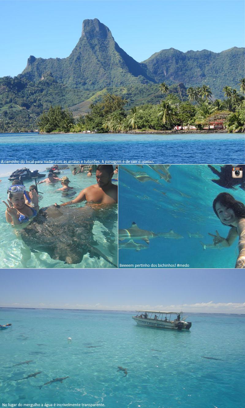 coisas que amamos diario de viagem moorea polinesia francesa 4