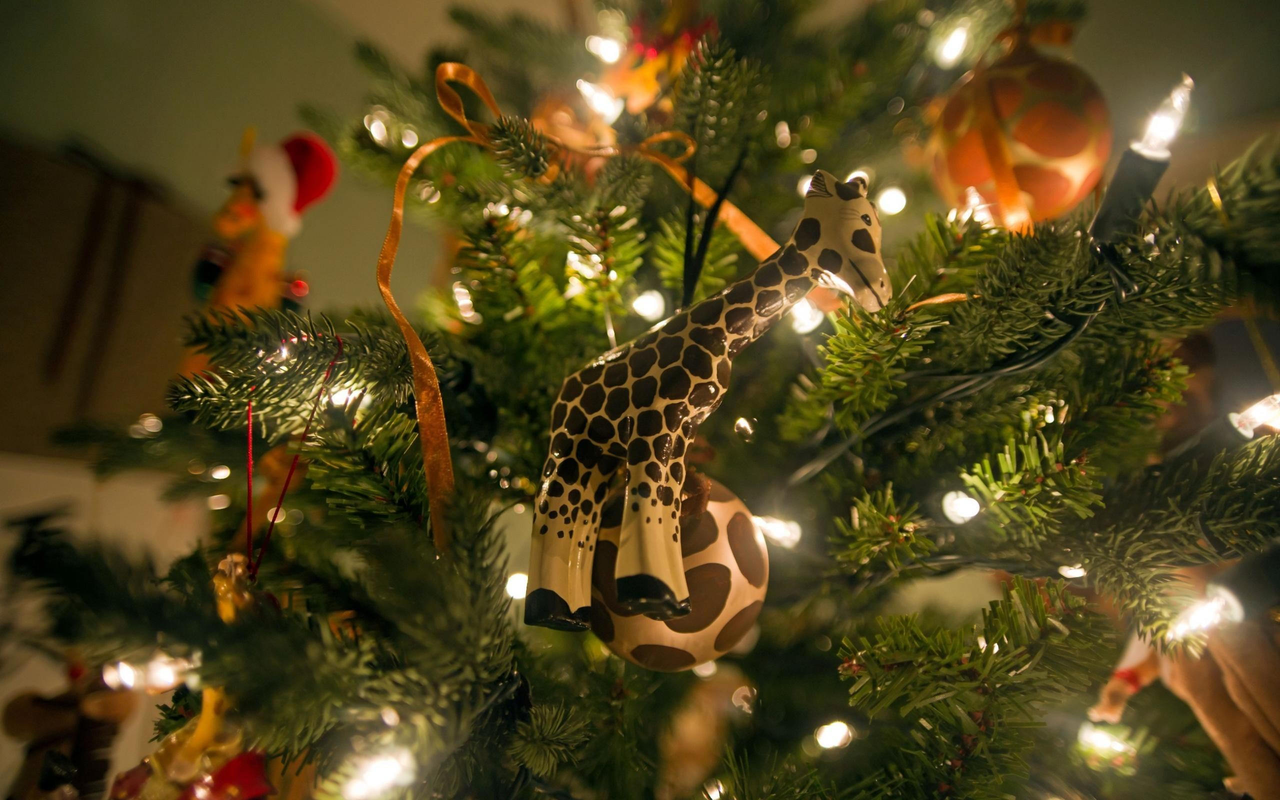 holiday-new-year-christmas-tree-photo-wallpaper-2560x1600