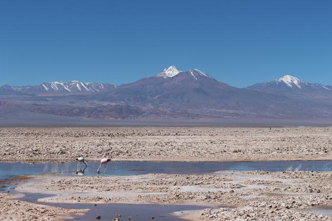 coisas que amamos diario de viagem deserto do atacama chile 2