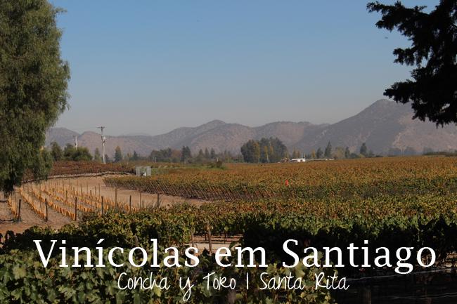 coisas que amamos diário de viagem chile santiago vinicola concha y toro santa rita 5