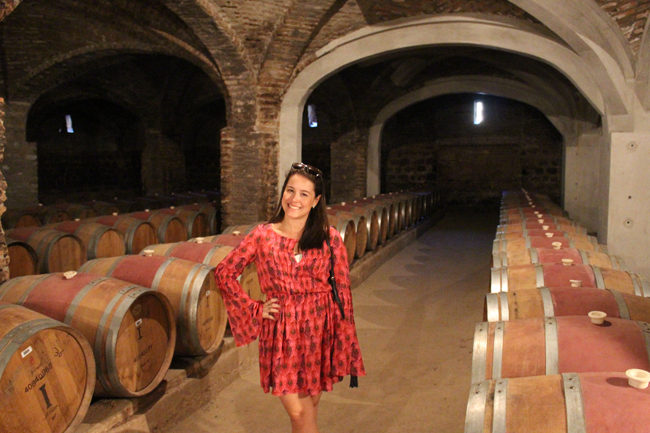 coisas que amamos diário de viagem chile santiago vinicola concha y toro santa rita 6